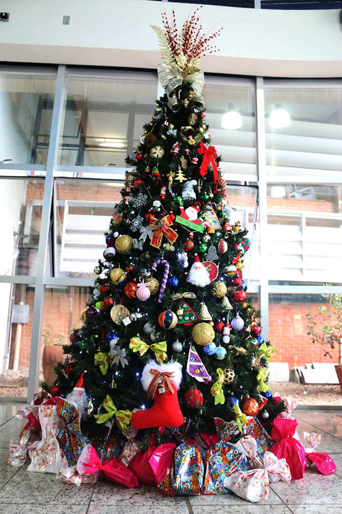 montagem arvore de natal hospital do cancer uberlandia 13